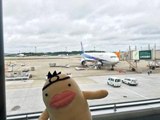 イケダム in 成田空港